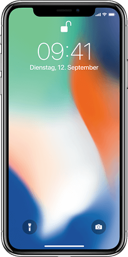 iPhone X Reparatur in Trier